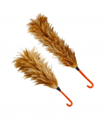 feather duster wood ไม้ขนไก่